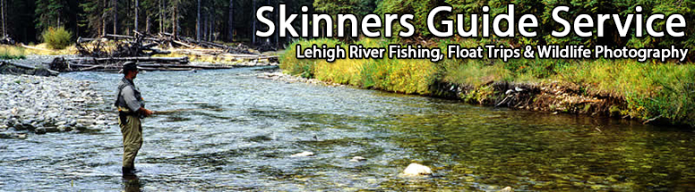 Lehigh River Fishing Tours