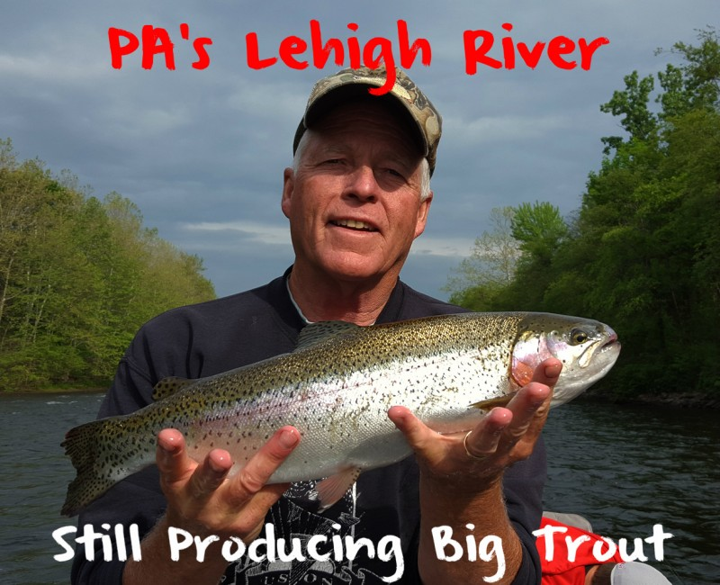 Gallery lehigh river stocking association for Pa fish stocking