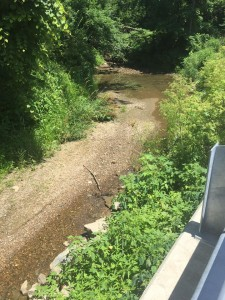 Coplay Creek Sinkhole